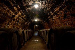 Kopané vínne pivnice bez okien so sudmi, v ktorých kvasí víno.