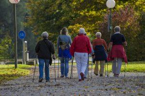 Skupina starších ľudí v parku pohybujúca sa nordic walkingovým spôsobom